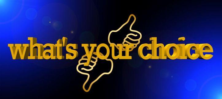 choice-1799748__480